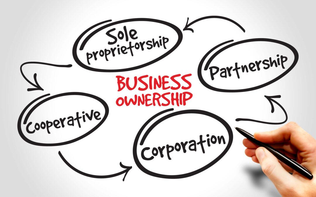 Business Structure—Sole Proprietorship or Partnership